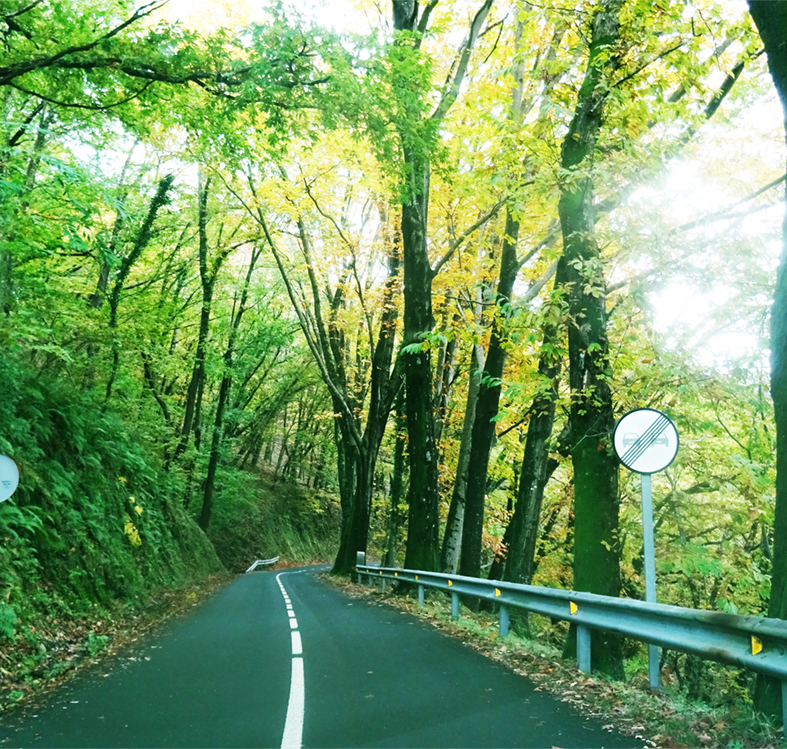 carreteras que perdonan 2